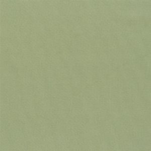 Aquarelle Olive Fabric by Designers Guild