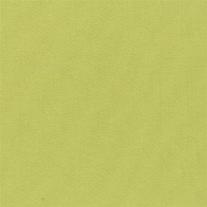 Aquarelle Moss Fabric by Designers Guild