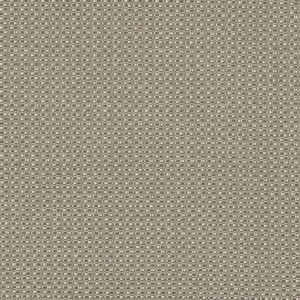 Amara Taupe Fabric by Casamance