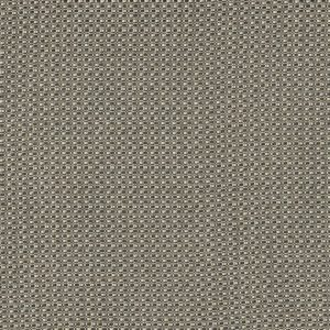 Amara Anthracite Fabric by Casamance