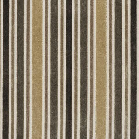 Collins Trench Fabric by Warwick