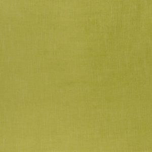 Lugano Apple Fabric by Clarke & Clarke