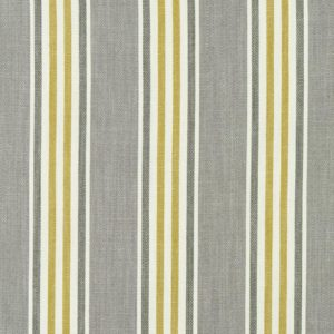 Quentin Charcoal/Chartreuse Fabric by Clarke & Clarke