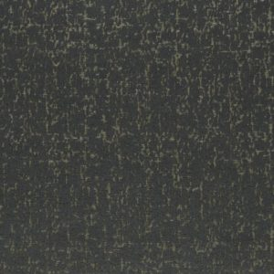 Anguilla - Charcoal Fabric by Clarke & Clarke (F1001/02)