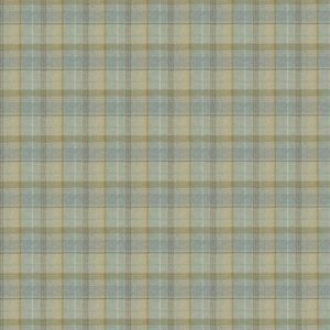 Carousel Check - Spruce Fabric by Jim Dickens (Carousel Check-Spruce)